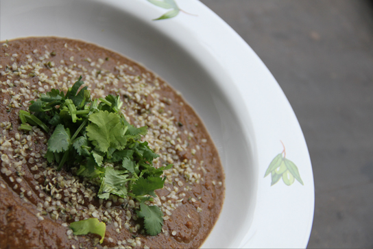 Indian Style Eggplant Soup 2