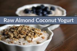 Raw Almond Coconut Yogurt-feat